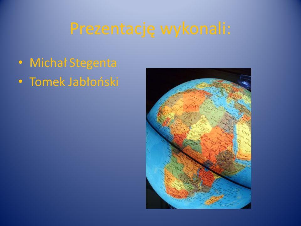 Prezentację wykonali: Michał Stegenta Tomek Jabłoński