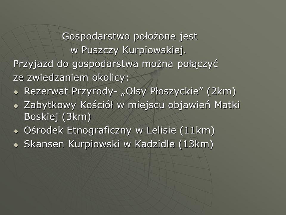 Gospodarstwo położone jest Gospodarstwo położone jest w Puszczy Kurpiowskiej. w Puszczy Kurpiowskiej. Przyjazd do gospodarstwa można połączyć ze zwied