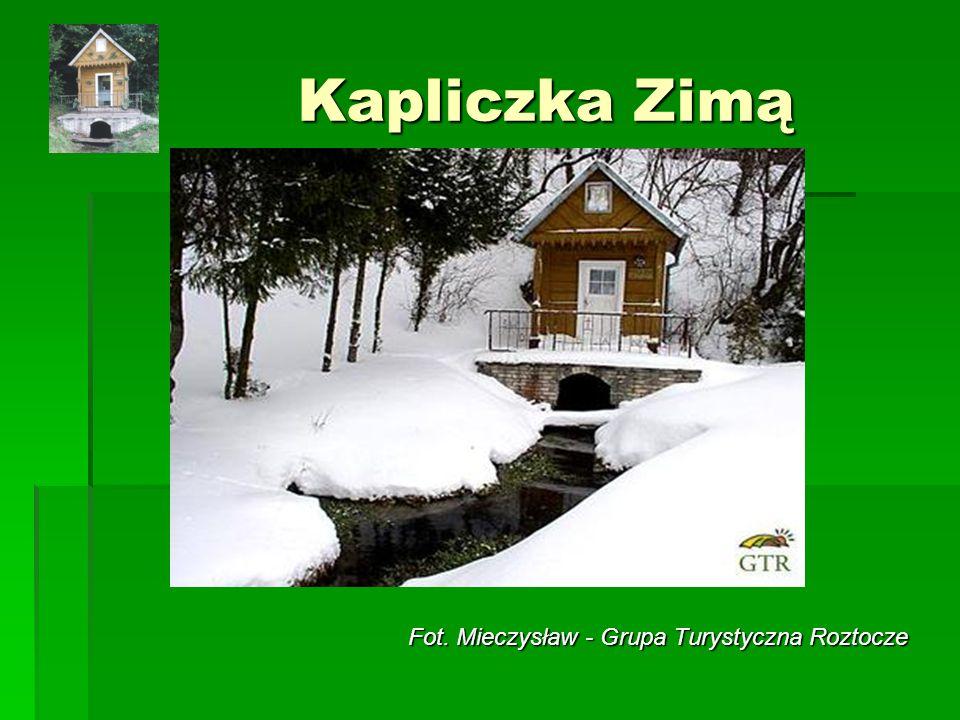 Kapliczka Zimą Fot. Mieczysław - Grupa Turystyczna Roztocze