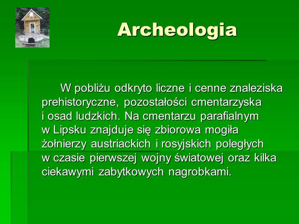 Archeologia W pobliżu odkryto liczne i cenne znaleziska prehistoryczne, pozostałości cmentarzyska i osad ludzkich.
