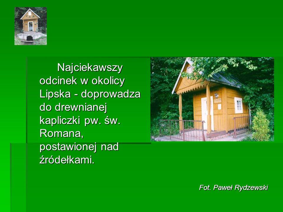 Najciekawszy odcinek w okolicy Lipska - doprowadza do drewnianej kapliczki pw.