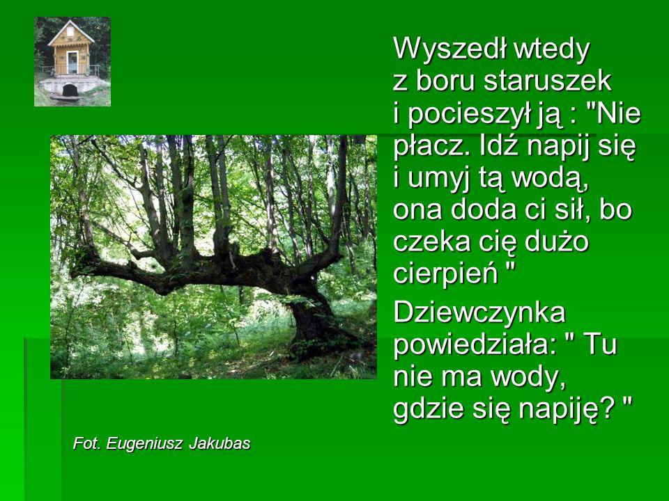 Fot.Eugeniusz Jakubas Wyszedł wtedy z boru staruszek i pocieszył ją : Nie płacz.