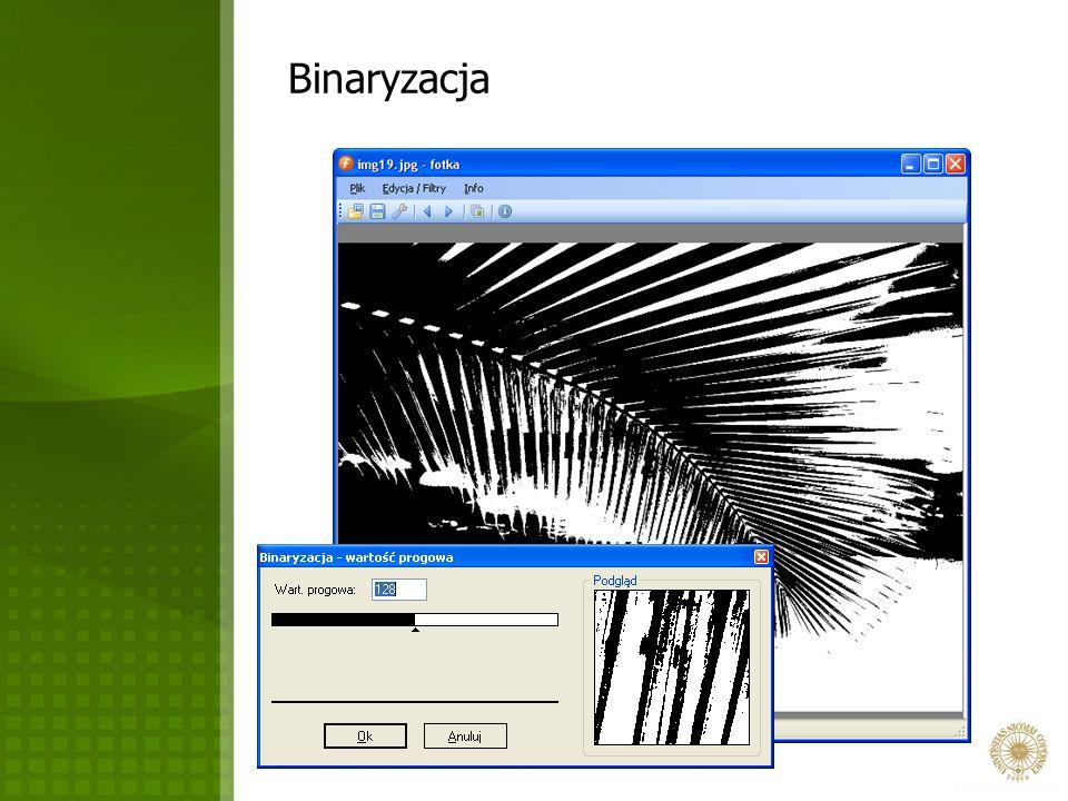 Binaryzacja