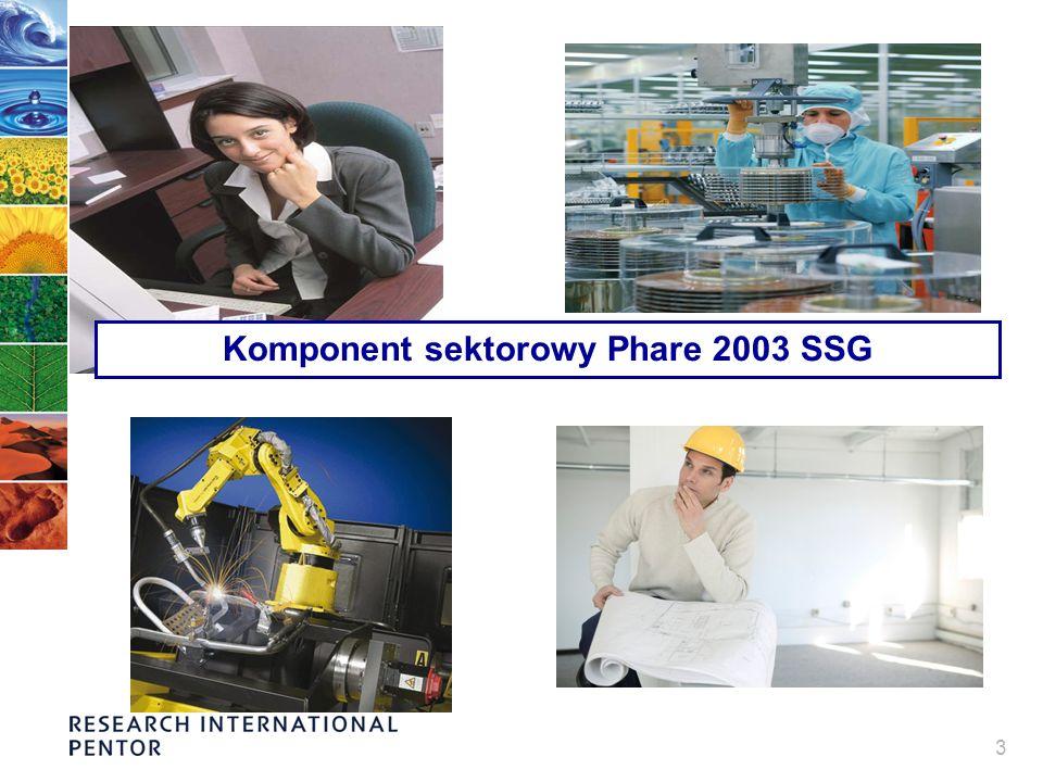 3 Komponent sektorowy Phare 2003 SSG