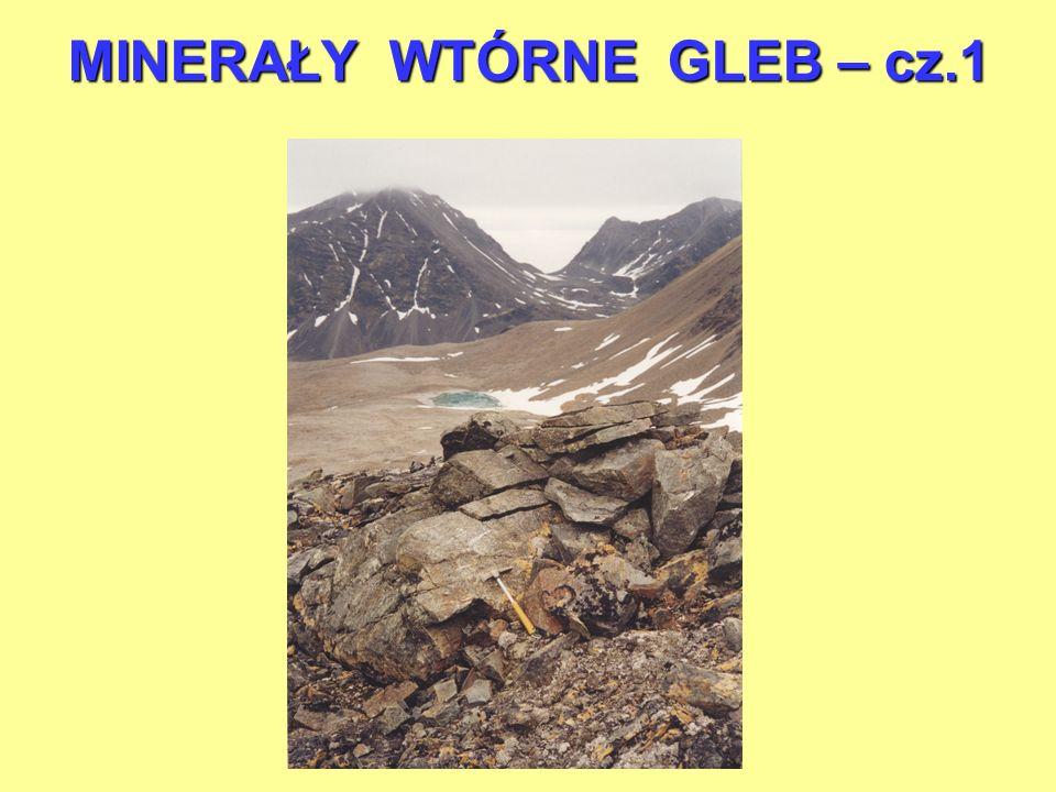 Systematyka minerałów autogenicznych gleb 1.Krzemiany warstwowe 2.Tlenki żelaza 3.Tlenki glinu 4.Tlenki manganu 5.Allofany 6.Tlenki tytanu i cyrkonu 7.Minerały łatwo rozpuszczalne 8.Minerały siarczkowe 9.Minerały fosforanowe
