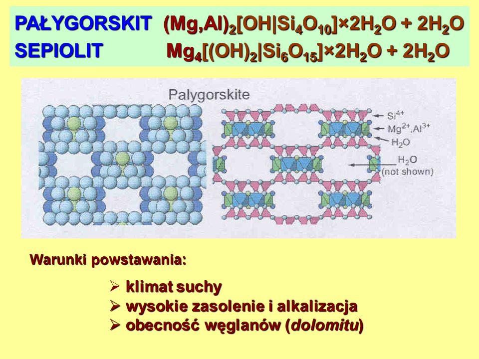 PAŁYGORSKIT (Mg,Al) 2 [OH|Si 4 O 10 ]×2H 2 O + 2H 2 O SEPIOLIT Mg 4 [(OH) 2 |Si 6 O 15 ]×2H 2 O + 2H 2 O Warunki powstawania: klimat suchy wysokie zas