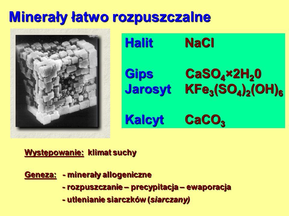 Minerały łatwo rozpuszczalne Halit NaCl Gips CaSO 4 ×2H 2 0 Jarosyt KFe 3 (SO 4 ) 2 (OH) 6 Kalcyt CaCO 3 Występowanie: klimat suchy Geneza: - minerały