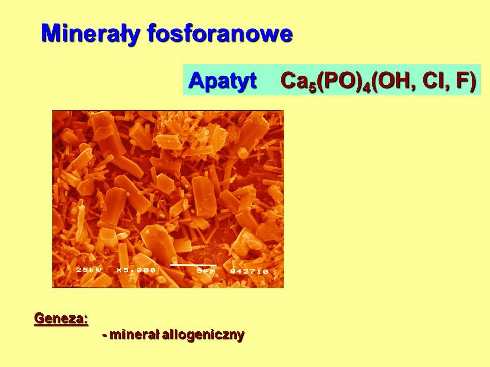 Minerały fosforanowe Apatyt Ca 5 (PO) 4 (OH, Cl, F) Geneza: - minerał allogeniczny - minerał allogeniczny