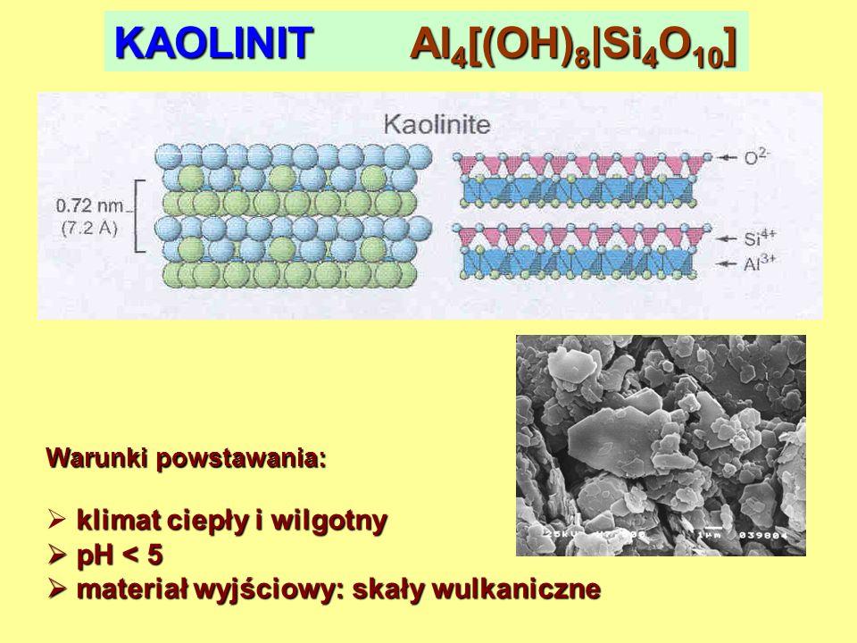 HALOIZYT Al 4 [(OH) 8 |Si 4 O 10 ]×4H 2 O Warunki powstawania: klimat ciepły i wilgotny więcej wody, niż dla kaolinitu więcej wody, niż dla kaolinitu pH < 5 pH < 5 materiał wyjściowy: skały wulkaniczne materiał wyjściowy: skały wulkaniczne