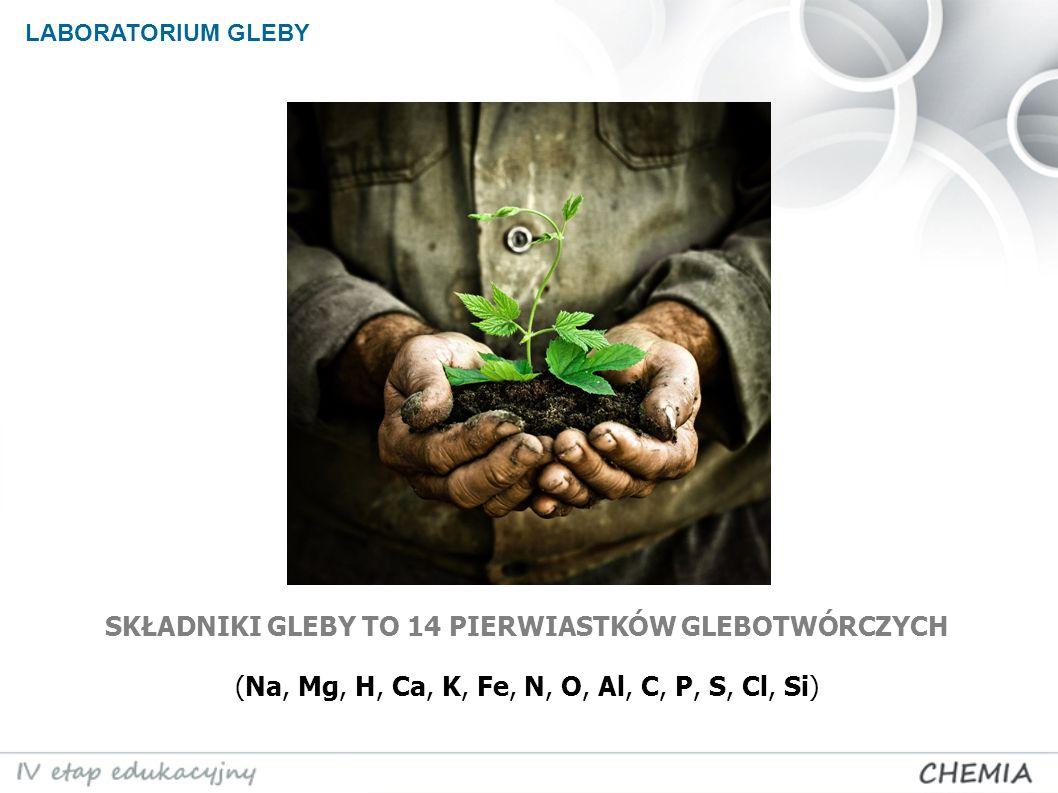 SKŁADNIKI GLEBY TO 14 PIERWIASTKÓW GLEBOTWÓRCZYCH (Na, Mg, H, Ca, K, Fe, N, O, Al, C, P, S, Cl, Si) LABORATORIUM GLEBY