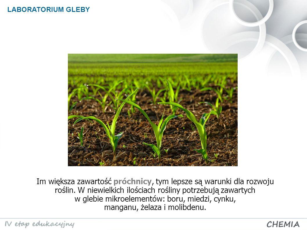 LABORATORIUM GLEBY Im większa zawartość próchnicy, tym lepsze są warunki dla rozwoju roślin.