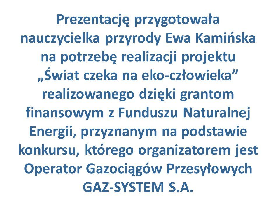 Prezentację przygotowała nauczycielka przyrody Ewa Kamińska na potrzebę realizacji projektu Świat czeka na eko-człowieka realizowanego dzięki grantom