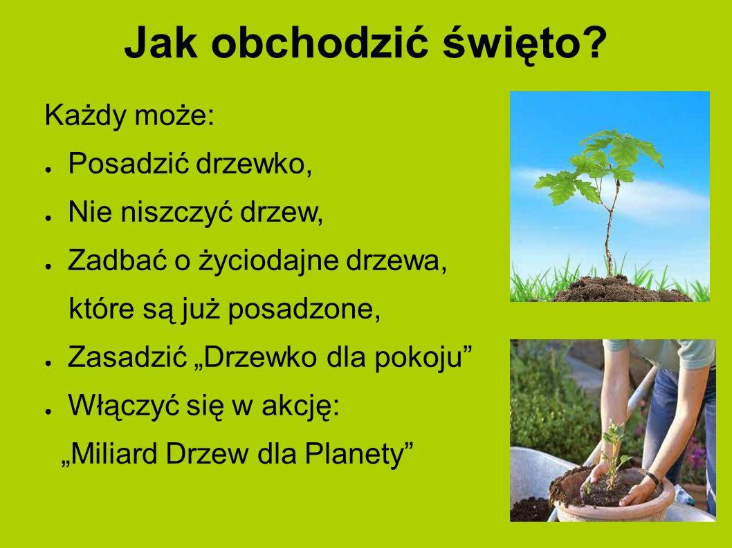 Partnerzy Święta Drzewa Od początku partnerem strategicznym programu Święto Drzewa są Lasy Państwowe.