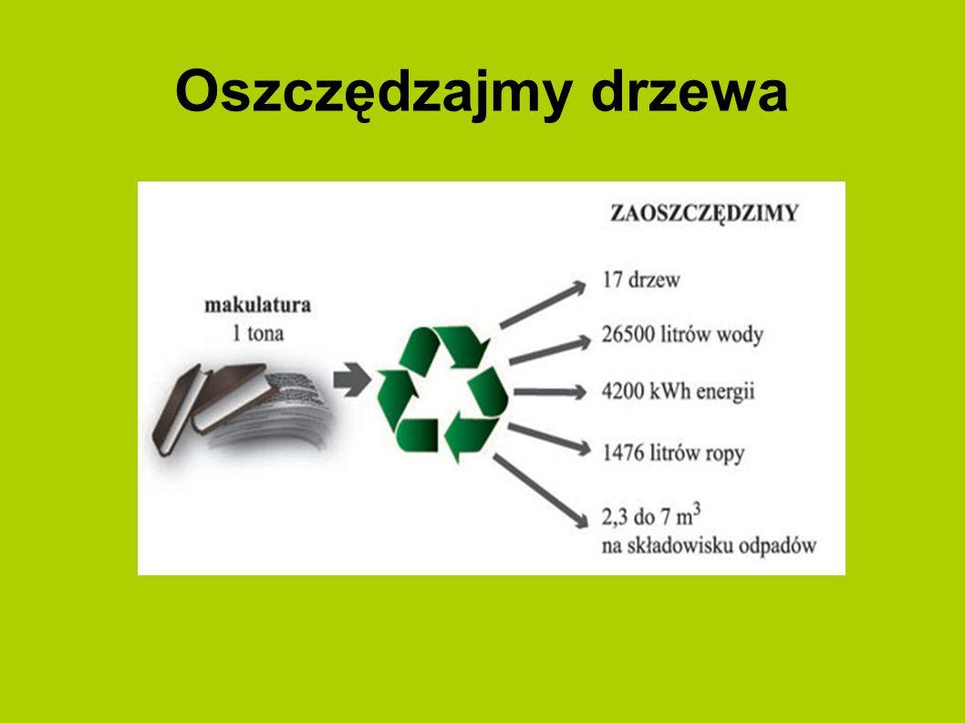 Prezentacje przygotował uczeń klasy VI Jakub Nowak