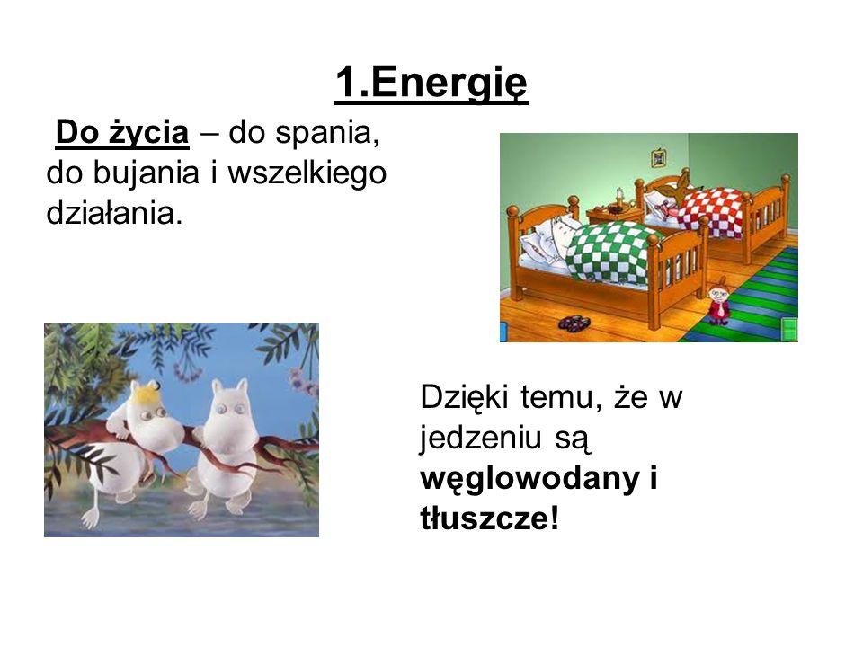 2.Składniki (materiał, budulec ) do rośnięcia i rozwoju.