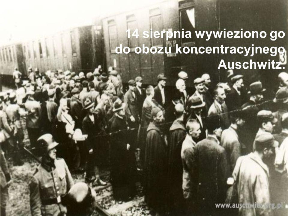 14 sierpnia wywieziono go do obozu koncentracyjnego Auschwitz.