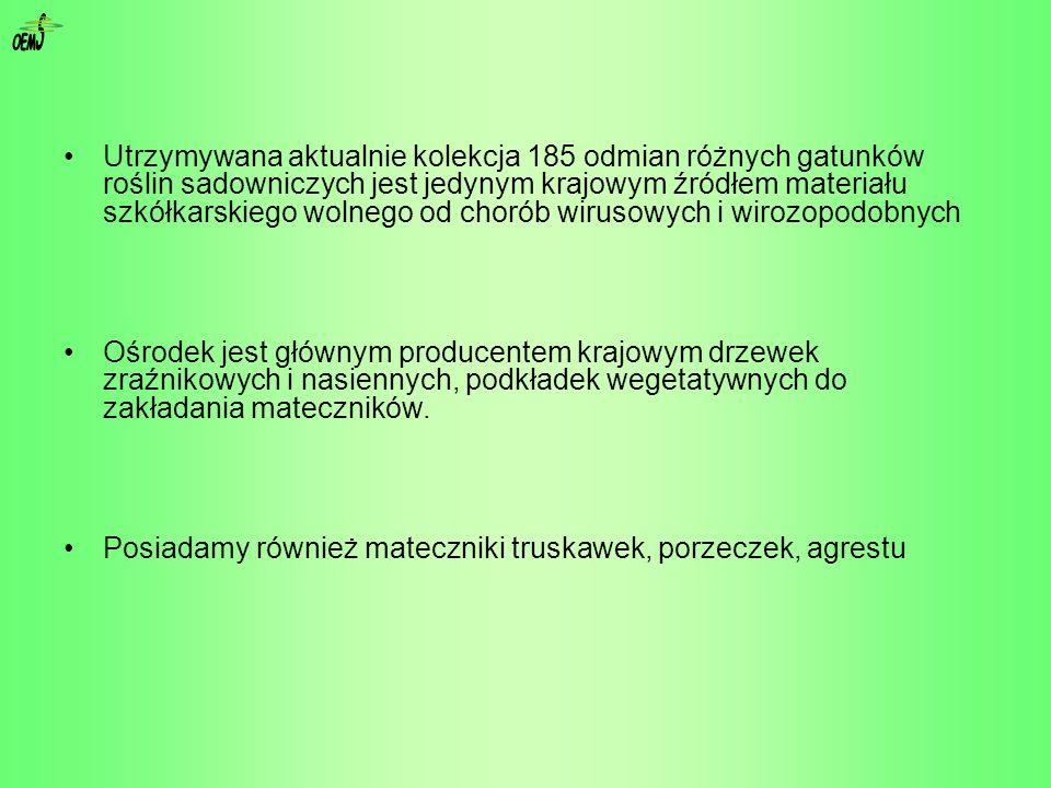 podstawa prawna dla produkcji szkółkarskiej w Polsce Rozporządzenie Ministra Rolnictwa i Rozwoju Wsi z dnia 1 lutego 2007 r.