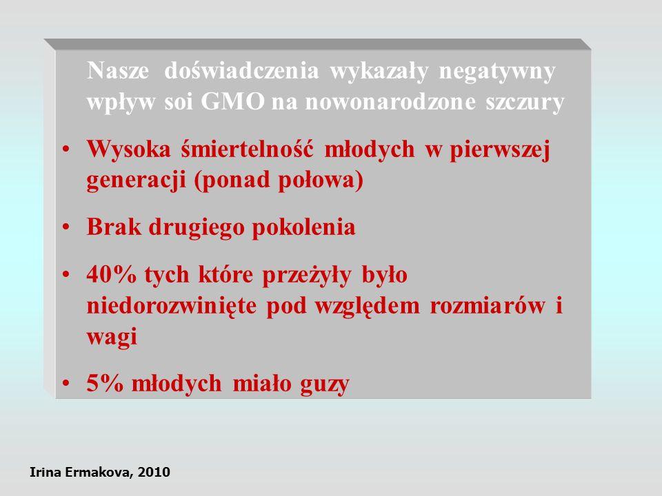 Nasze doświadczenia wykazały negatywny wpływ soi GMO na nowonarodzone szczury Wysoka śmiertelność młodych w pierwszej generacji (ponad połowa) Brak dr