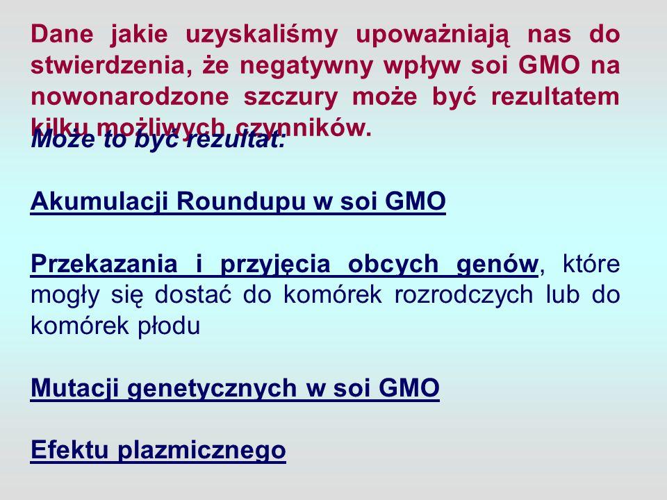Dane jakie uzyskaliśmy upoważniają nas do stwierdzenia, że negatywny wpływ soi GMO na nowonarodzone szczury może być rezultatem kilku możliwych czynni