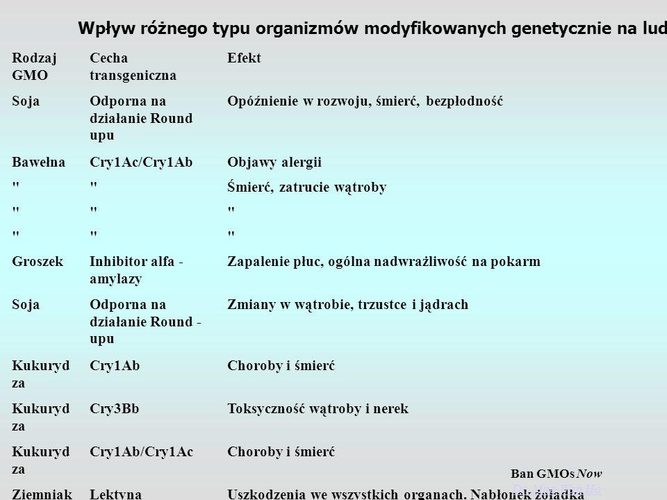 Gatune k Rodzaj GMO Cecha transgeniczna Efekt Szczur y SojaOdporna na działanie Round upu Opóźnienie w rozwoju, śmierć, bezpłodność Ludzie BawełnaCry1