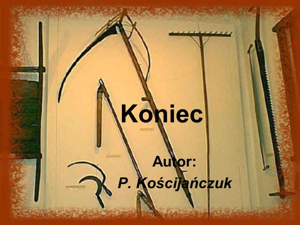 Koniec Autor: P. Kościjańczuk