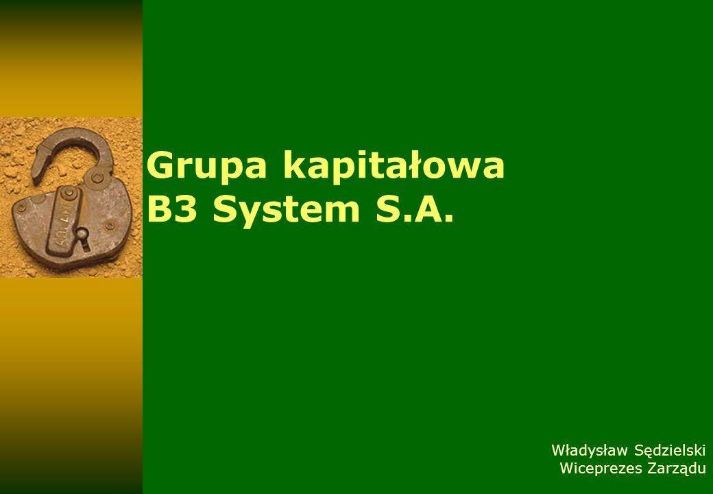 Grupa kapitałowa B3 System S.A. Władysław Sędzielski Wiceprezes Zarządu