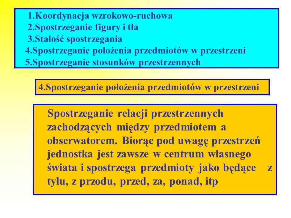 1.Koordynacja wzrokowo-ruchowa 2.Spostrzeganie figury i tła 3.Stałość spostrzegania 4.Spostrzeganie położenia przedmiotów w przestrzeni 5.Spostrzegani