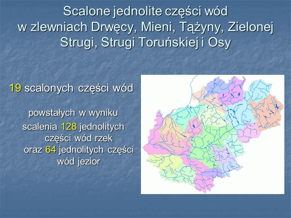 Scalone jednolite części wód w zlewniach Drwęcy, Mieni, Tążyny, Zielonej Strugi, Strugi Toruńskiej i Osy 19 scalonych części wód powstałych w wyniku s
