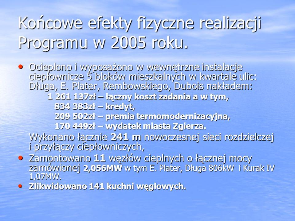 Końcowe efekty fizyczne realizacji Programu w 2005 roku.