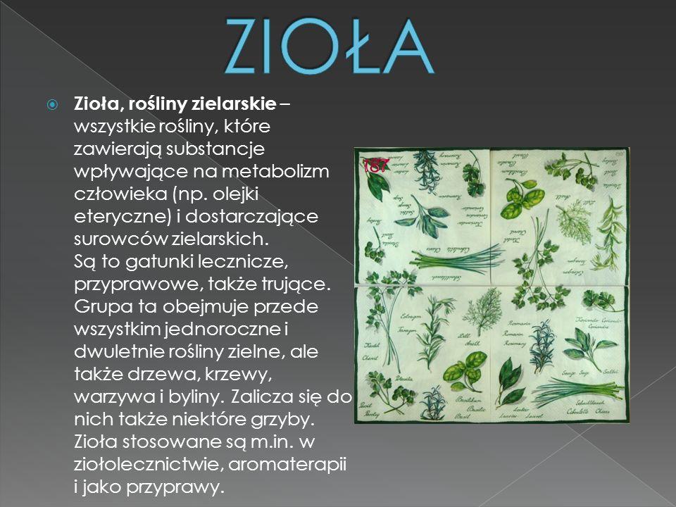 Zioła, rośliny zielarskie – wszystkie rośliny, które zawierają substancje wpływające na metabolizm człowieka (np. olejki eteryczne) i dostarczające su