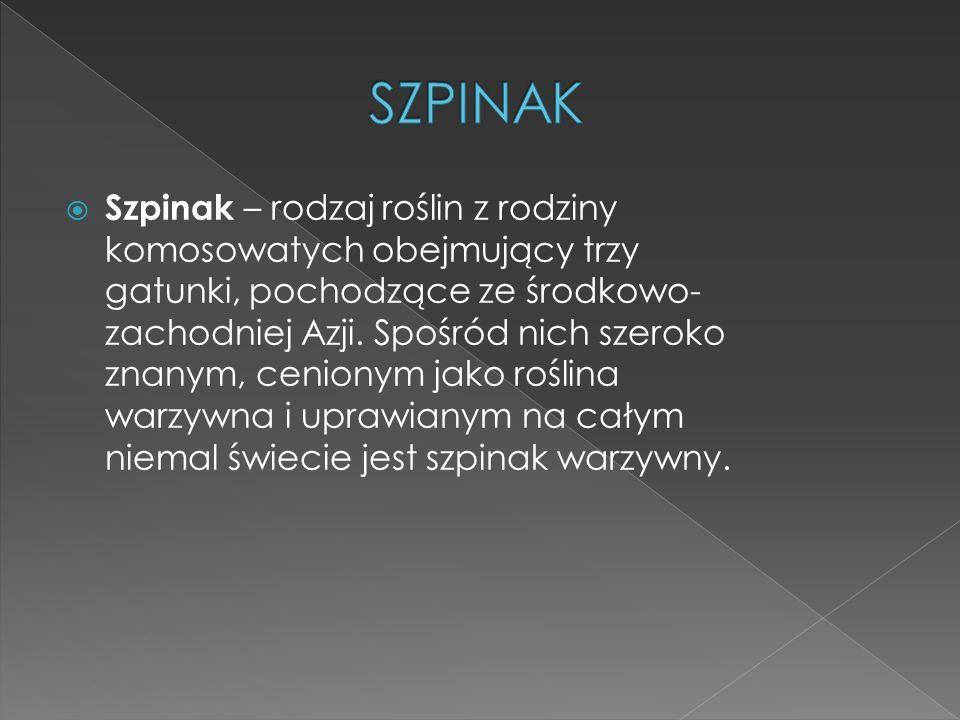 Szpinak – rodzaj roślin z rodziny komosowatych obejmujący trzy gatunki, pochodzące ze środkowo- zachodniej Azji. Spośród nich szeroko znanym, cenionym