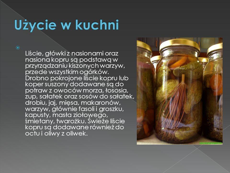 Liście, główki z nasionami oraz nasiona kopru są podstawą w przyrządzaniu kiszonych warzyw, przede wszystkim ogórków. Drobno pokrojone liście kopru lu