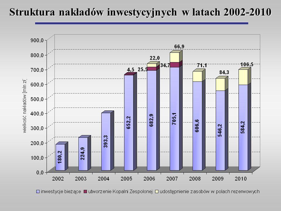 Struktura nakładów inwestycyjnych w latach 2002-2010