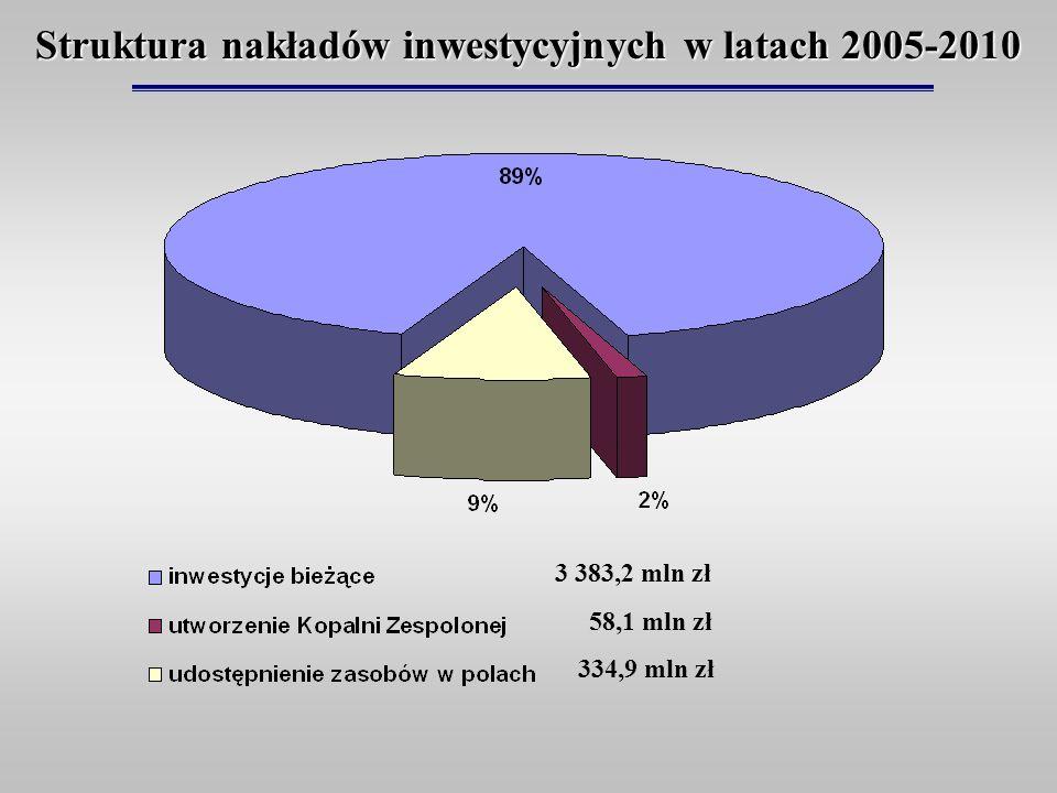 Struktura nakładów inwestycyjnych w latach 2005-2010 3 383,2 mln zł 58,1 mln zł 334,9 mln zł