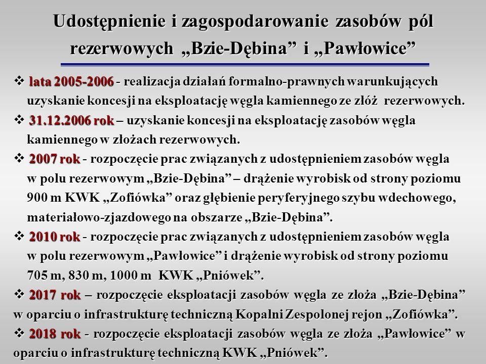 Udostępnienie i zagospodarowanie zasobów pól rezerwowych Bzie-Dębina i Pawłowice lata 2005-2006 - realizacja działań formalno-prawnych warunkujących u