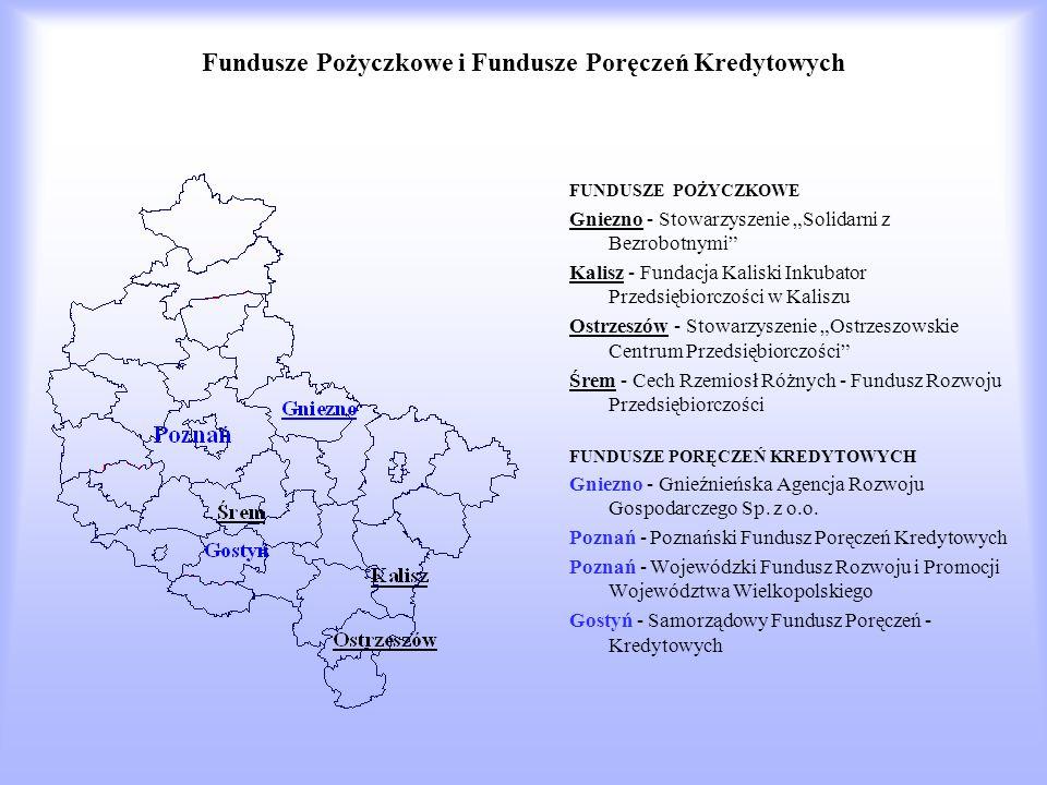 Fundusze Pożyczkowe i Fundusze Poręczeń Kredytowych FUNDUSZE POŻYCZKOWE Gniezno - Stowarzyszenie Solidarni z Bezrobotnymi Kalisz - Fundacja Kaliski Inkubator Przedsiębiorczości w Kaliszu Ostrzeszów - Stowarzyszenie Ostrzeszowskie Centrum Przedsiębiorczości Śrem - Cech Rzemiosł Różnych - Fundusz Rozwoju Przedsiębiorczości FUNDUSZE PORĘCZEŃ KREDYTOWYCH Gniezno - Gnieźnieńska Agencja Rozwoju Gospodarczego Sp.