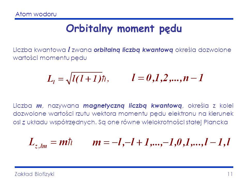 Atom wodoru Zakład Biofizyki11 Orbitalny moment pędu Liczba kwantowa l zwana orbitalną liczbą kwantową określa dozwolone wartości momentu pędu Liczba