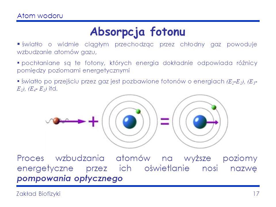 Atom wodoru Zakład Biofizyki17 Absorpcja fotonu światło o widmie ciągłym przechodząc przez chłodny gaz powoduje wzbudzanie atomów gazu, pochłaniane są
