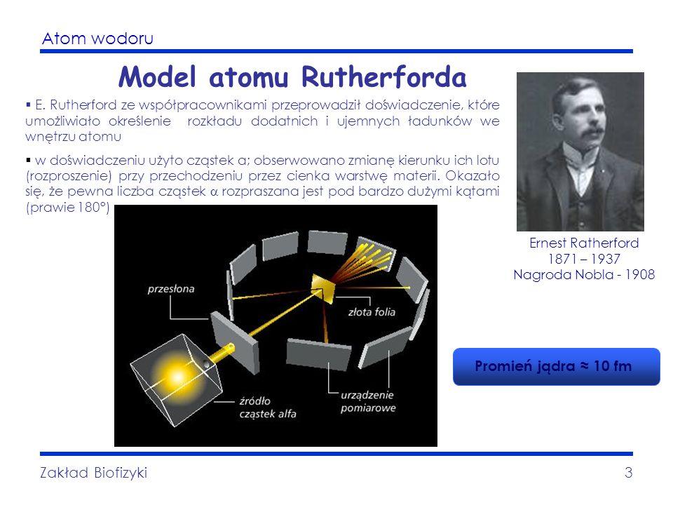 Atom wodoru Zakład Biofizyki3 Model atomu Rutherforda E. Rutherford ze współpracownikami przeprowadził doświadczenie, które umożliwiało określenie roz