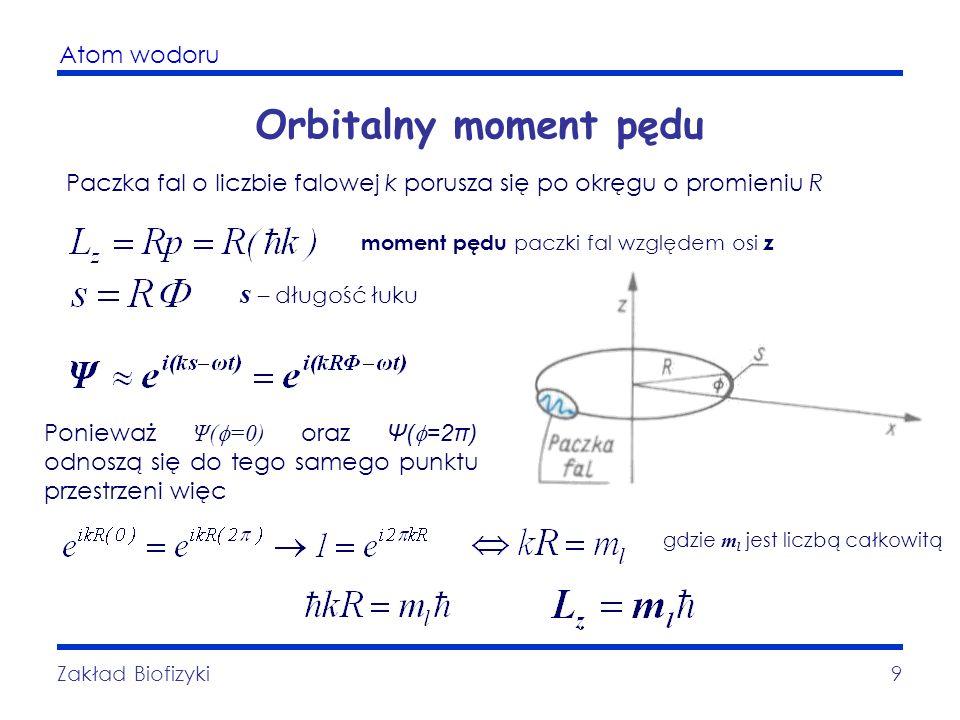 Atom wodoru Zakład Biofizyki9 Orbitalny moment pędu Paczka fal o liczbie falowej k porusza się po okręgu o promieniu R moment pędu paczki fal względem