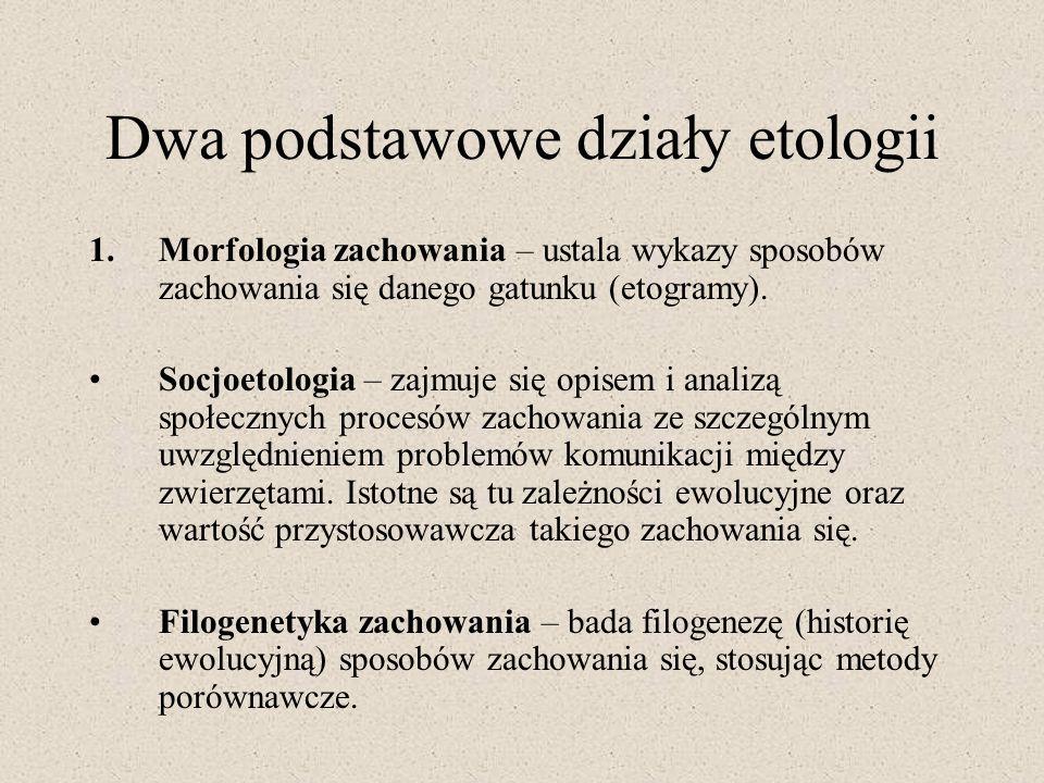 Dwa podstawowe działy etologii 1.Morfologia zachowania – ustala wykazy sposobów zachowania się danego gatunku (etogramy). Socjoetologia – zajmuje się