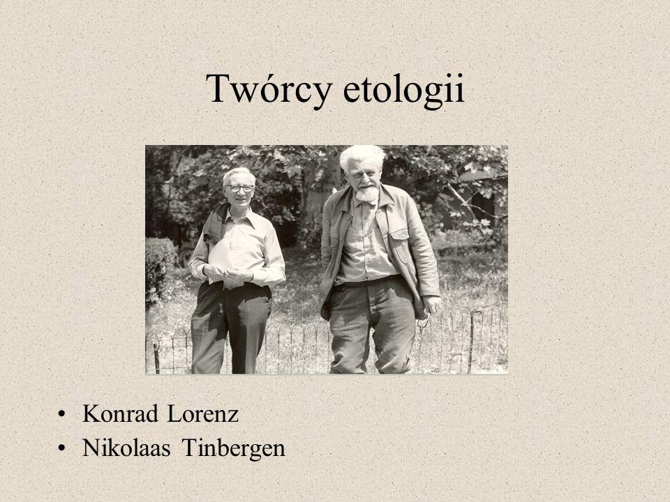 Twórcy etologii Konrad Lorenz Nikolaas Tinbergen