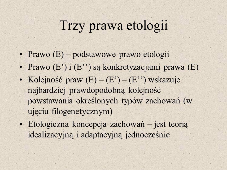 Trzy prawa etologii Prawo (E) – podstawowe prawo etologii Prawo (E) i (E) są konkretyzacjami prawa (E) Kolejność praw (E) – (E) – (E) wskazuje najbard