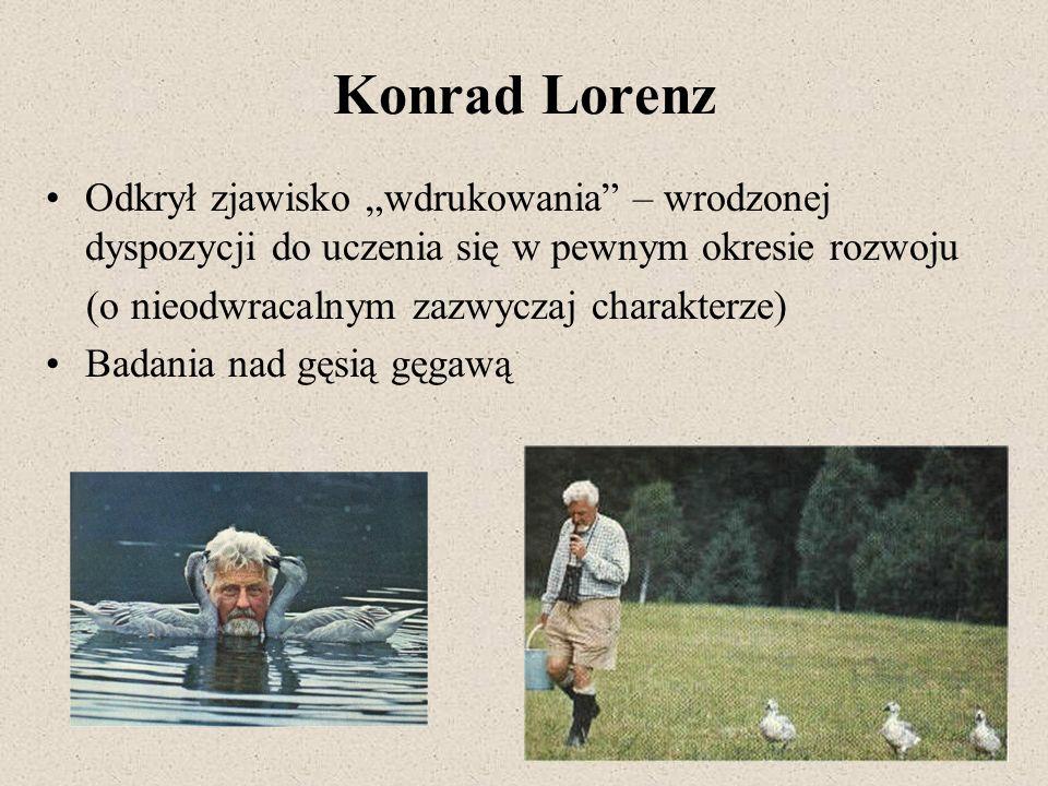 Konrad Lorenz Odkrył zjawisko wdrukowania – wrodzonej dyspozycji do uczenia się w pewnym okresie rozwoju (o nieodwracalnym zazwyczaj charakterze) Bada