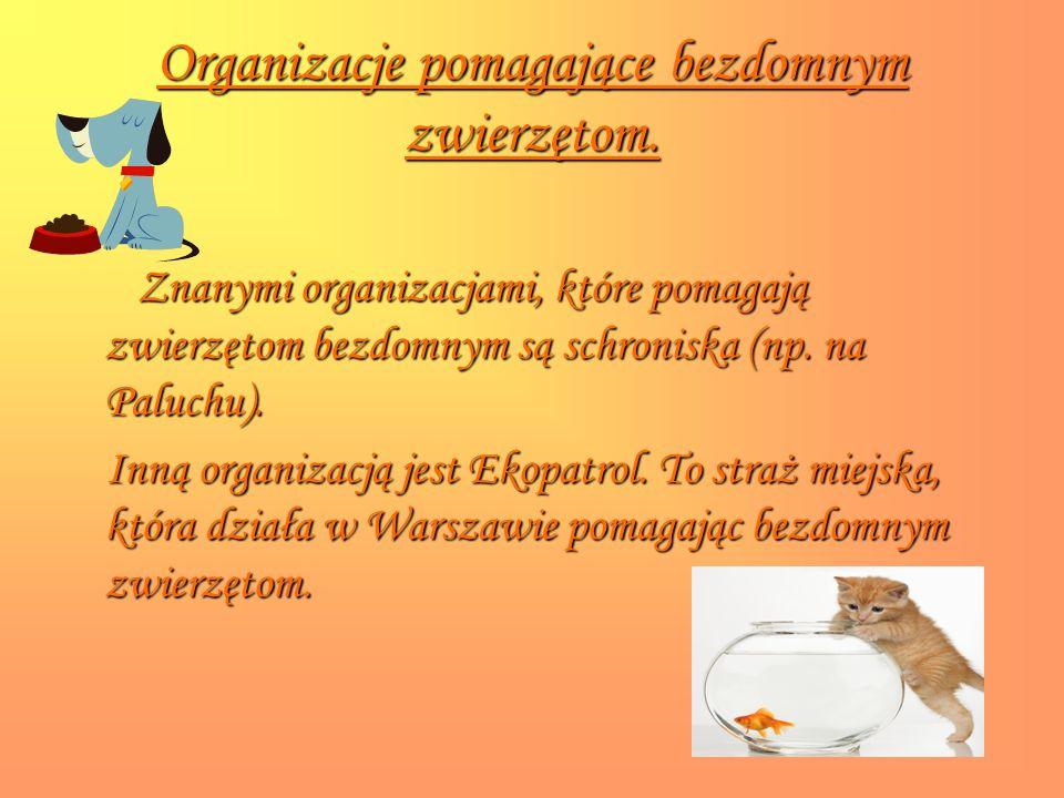Organizacje pomagające bezdomnym zwierzętom. Znanymi organizacjami, które pomagają zwierzętom bezdomnym są schroniska (np. na Paluchu). Inną organizac