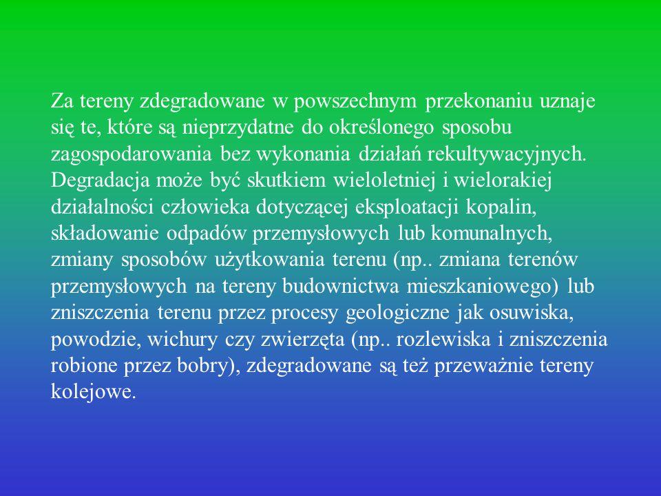 Od kilku lat prowadzone są w Polsce badania dotyczące ochrony środowiska i rekultywacji terenów pogórniczych i poprzemysłowych.