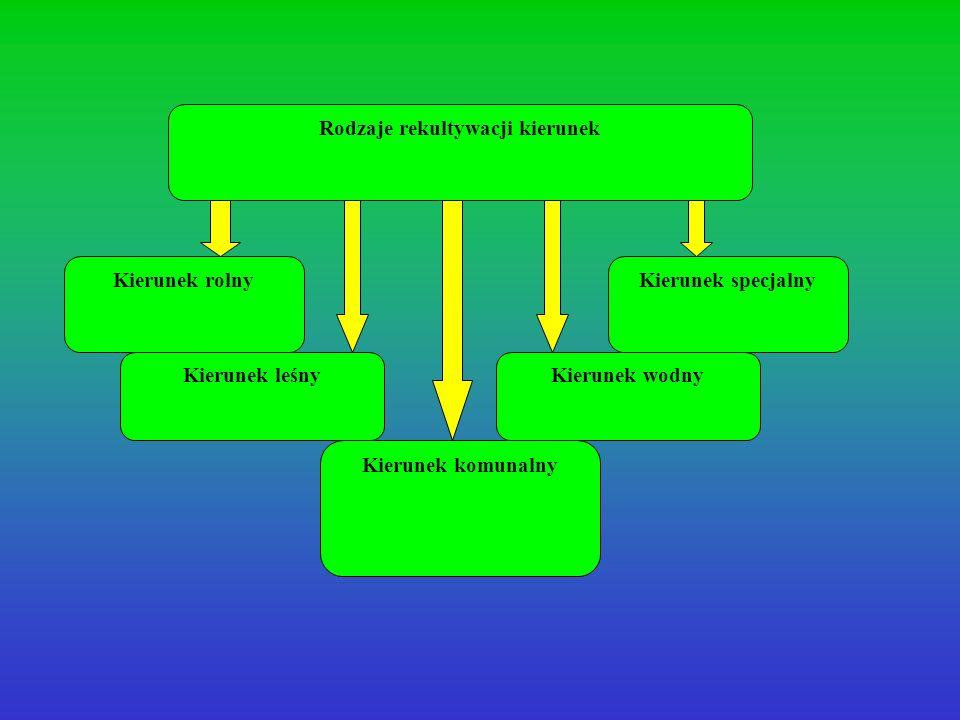 Rodzaje rekultywacji kierunek Kierunek rolny Kierunek komunalny Kierunek leśnyKierunek wodny Kierunek specjalny