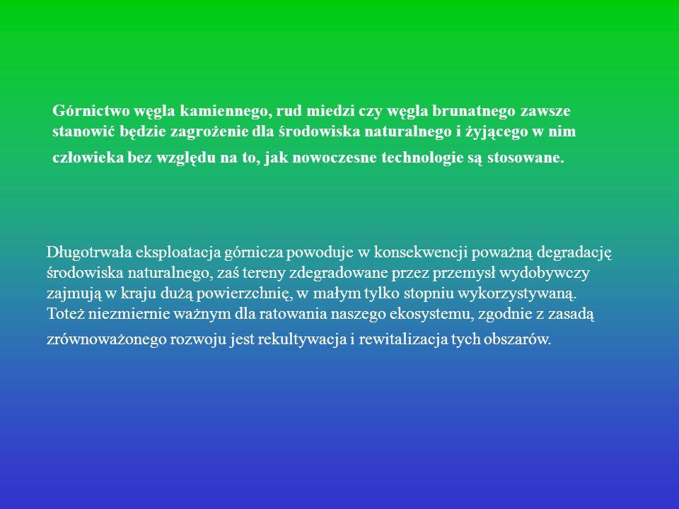 Fazy rekultywacji Faza przygotowawcza Faza podstawowa (techniczna) Faza biologiczna (szczegółowa)