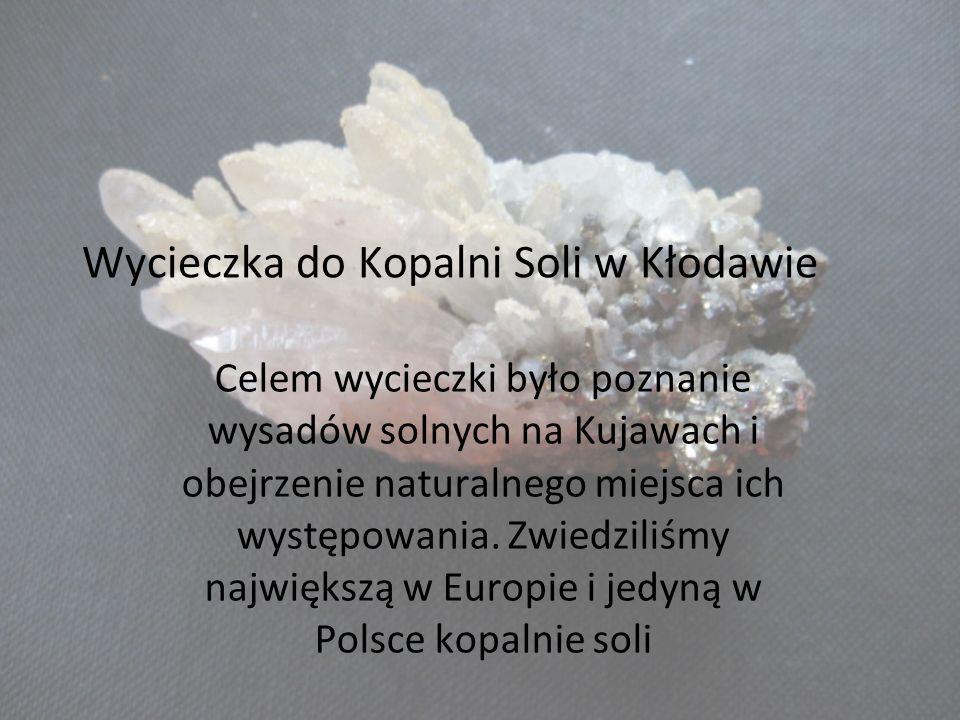 Wycieczka do Kopalni Soli w Kłodawie Celem wycieczki było poznanie wysadów solnych na Kujawach i obejrzenie naturalnego miejsca ich występowania. Zwie