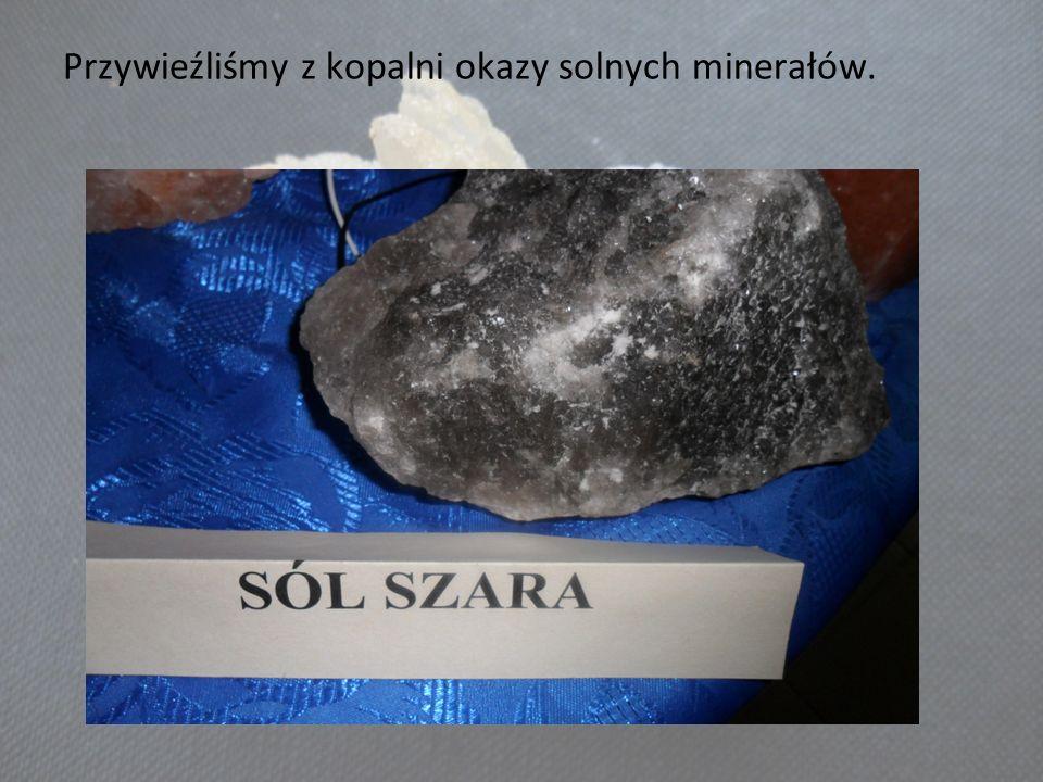 Przywieźliśmy z kopalni okazy solnych minerałów.